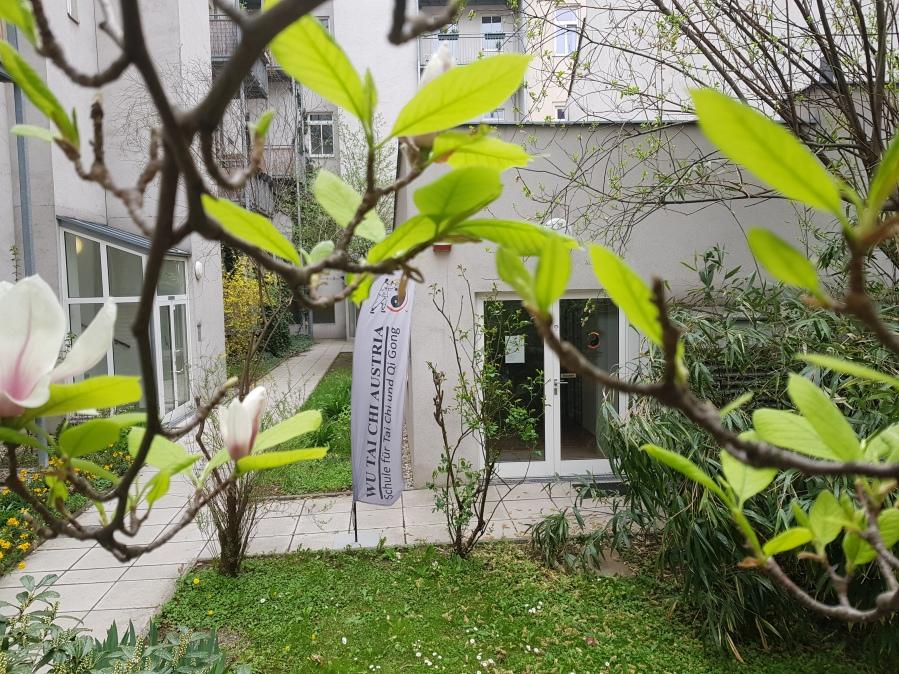 Wu Tai Chi Chuan Akademie Wien 3