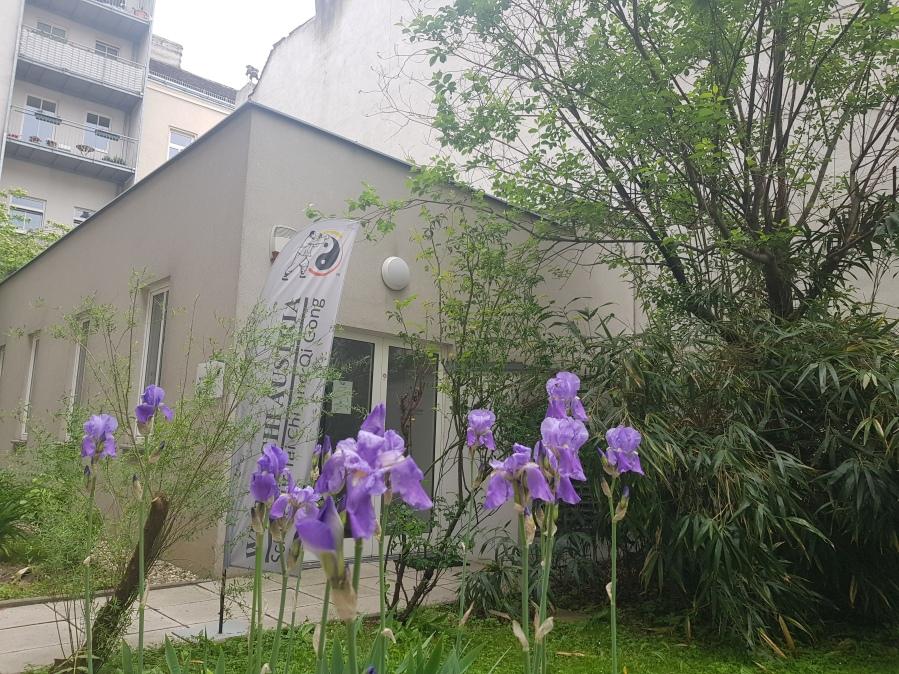Wu Tai Chi Chuan Akademie Wien2