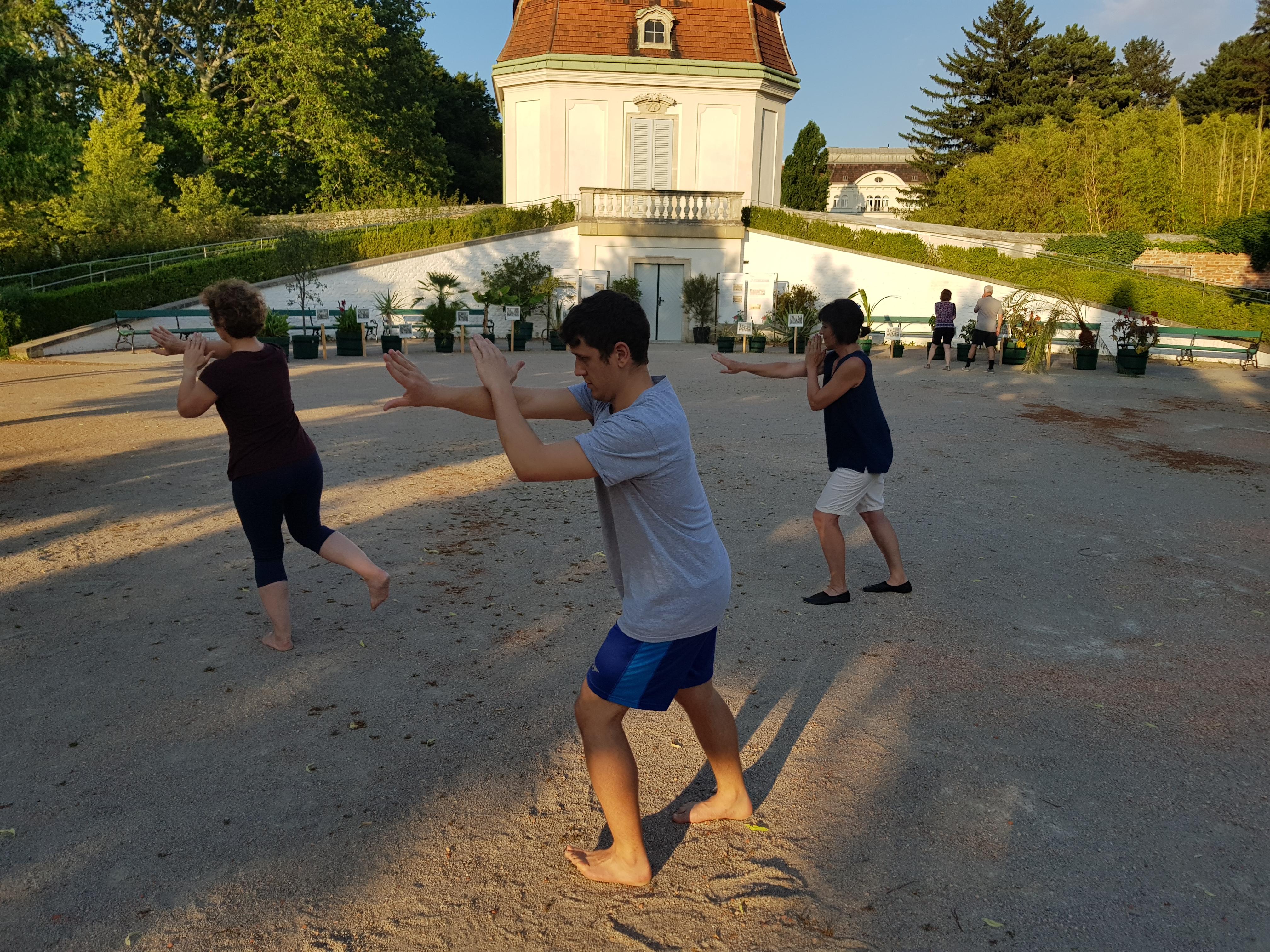 Tai Chi und Qi Gong im Schlosspark Belvedere